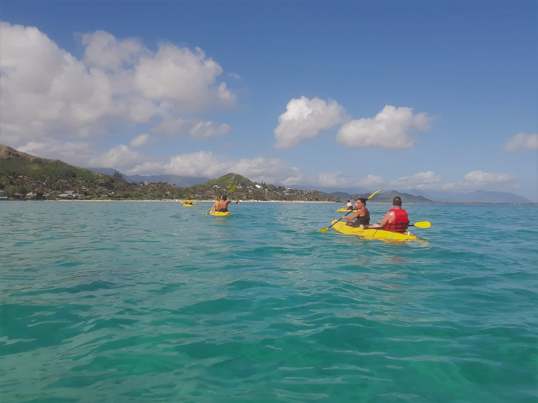 Category: Snorkeling On Oahu - HAWAII PRIVATE TOURS